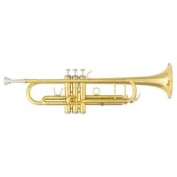 Victory VTR STUDENT trombita