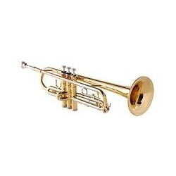 Garry Paul GP-T-810 Bb trombita