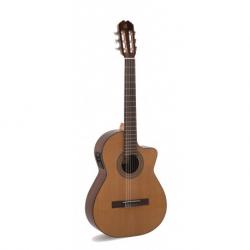 Malaga-E, Elektroakusztikus- klasszikus gitár