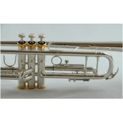 Garry Paul GP-6418SGP Bb trombita