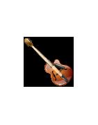 Elektroakusztikus gitárok